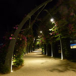 blumenverzirrte Promenade