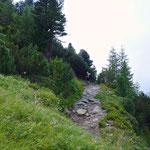 Vom Elferlift geht es gemütlich bergauf zur Elferhütte.