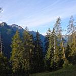 Ein Rückblick - im Hintergrund die Gipfel der Zwölferspitze und des Habichts.