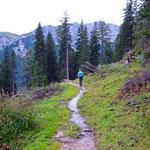 Nach dem steilen Waldabschnitt wird es wieder flacher.