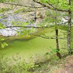 Wunderschöne Tiefblicke auf den smaragdgrünen Reichramingerbach.