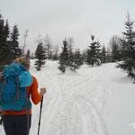 durch tiefen Schnee weiter Richtung Steyrerhütte