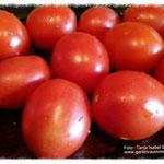 Tomaten waschen.