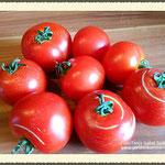 Reife Tomaten aus dem Garten.