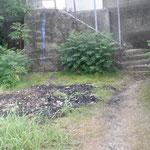 7月12日に中部電力川越火力の社員さんが清掃活動してくれました。