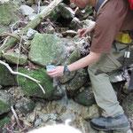 羽鳥峰の大河の一滴、こちらのほうが飲みやすく感じたかな!