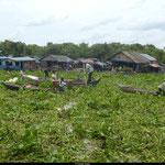 Le village des pêcheurs, au large de Siem Reap... Maisons sur pilotis, enfants qui gambadent nus, odeurs de poissons séchés