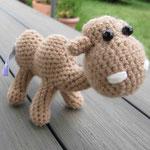 Kamel (verkauft)