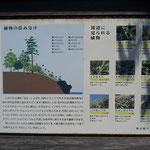 海岸独特の植生の解説があります。