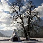 JANUAR 2015 - Winterlandschaft in Häselgehr