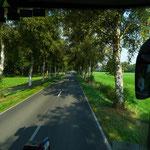 Auf nach Worpswede (Foto:Dorit Hartz)