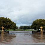 3/1 OP @Stanford Univ