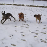 Pepper, Gina, Kira