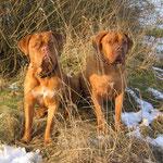 Yuma + Gina im Jan.`14