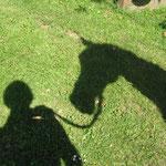 Schattenspiele ! Raya + ich .......