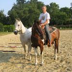 Handpferde-Training mit Majid, Sommer`14
