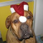 Vincent macht den Weihnachtsmann !