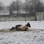 .....im Schnee ......