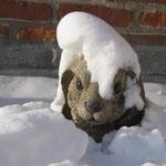 Dez.2010, mir steht der Schnee bis zum Hals !