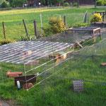 Gartenfeeling 2012 vo. li. n. re.