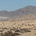 und durch die Wüste ....