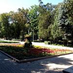 viele Parks mit hohen Bäumen