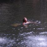 und schon ist Barbara im Wasser