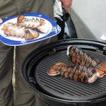 Lobstertails - die lassen wir uns schmecken