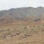 abwechslungsweise Wüste ....