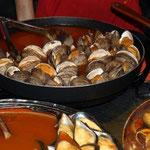 Muscheln und Schnecken sind uns eher bekannt