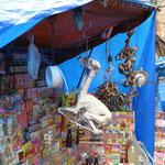 auf dem Hexenmarkt - Lamaembrios