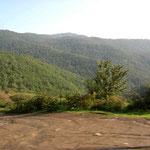 grosse Waldgebiete – nur ganz im Norden vom Iran