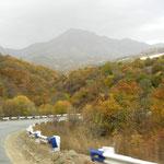 herbstlicher Wald empfängt uns in Armenien
