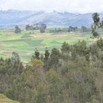 Von Cusco aus mit dem Bus über Land .....