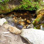 Bächlein mit klarem Wasser – Trinkwasserqualität !