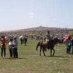 das Festgelände der Reiterspiele