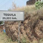 von hier stammt der berühmte Tequila