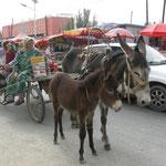 Ugurien