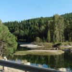 Wechsel in bewaldete Gegend von Montana