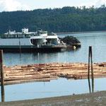neben der Fischerei gibt es auch noch das Holzgewerbe