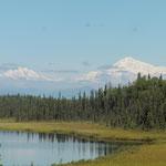 ein erster Blick auf den Mt. McKinley - noch von weit weg