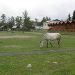 Schul- und Sportplatz in Arschan