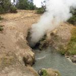 hydrothermale Erscheinungen in diversen Formen