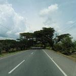 Autobahn mit Überdachug
