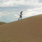 in den Sanddünen