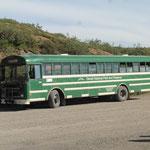 mit dem Shuttle Bus geht's ab in den Denali NP