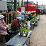 kleine Marktstände für ältere Leute