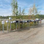 entlang der Strasse - Briefkästen zu Hauf - aber keine Häuser in Sicht