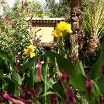 und verschiedenen Blumen