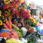 natürlicih gibt es auch einen Blumenmarkt